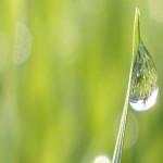 Armani, per la CSR, coinvolge i suoi fornitori