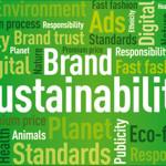 Perché i consumatori bocciano i bilanci di sostenibilità?