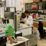 «Amici del centro Dino Ferrari»  da 35 anni un aiuto alla ricerca