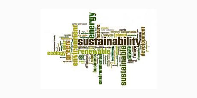 Sustainability profession under the spotlight