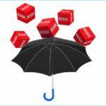Strategic Risk Governance e Sostenibilità - Convegno di Nedcommunity