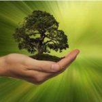 Bicocca e Fondazione Feltrinelli propongono master in sustainable development jobs