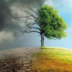 La sostenibilità è un asset che può essere profittevole