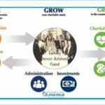 Fondazione Lang presenta Daf - Donor Advised Fund
