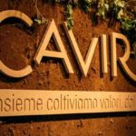 Gruppo Caviro ha presentato il suo primo Bilancio di Sostenibilità