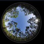 Osservatorio Nazionale sulla Rendicontazione non Finanziaria - Evento Deloitte con SDA Bocconi - 21 ottobre