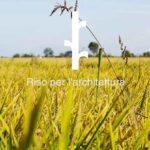 RiceHouse, tre importanti premi per l'innovazione nell'ambito dell'economia circolare