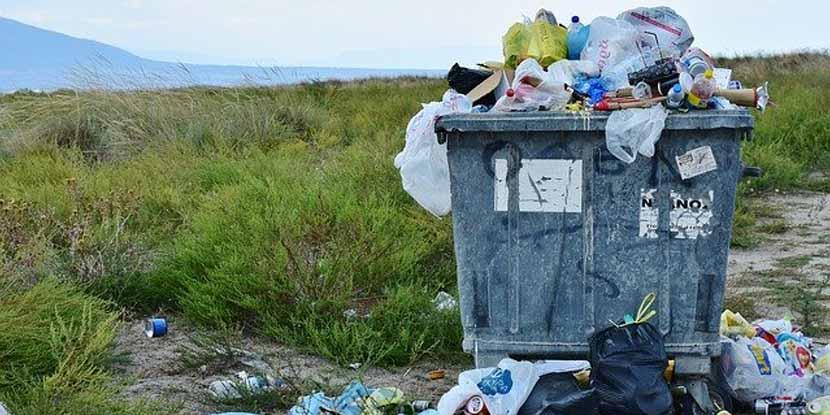 La spazzatura e le sue virtù