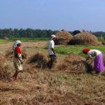 Lavoro informale: cresce l'attenzione al fenomeno grazie a FMI e Ocse