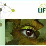 LifeGate: 1° Osservatorio Roma e la Sostenibilità – scopri i risultati
