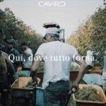 """Il nuovo sito Caviro, all'insegna di """"Qui, dove tutto torna"""""""