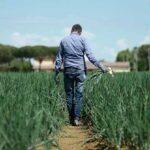 SIPO, scelte sostenibili a livello sociale, etico e produttivo